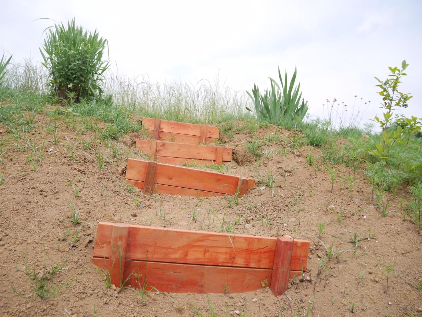掘って固めて作りました 手作りの階段です